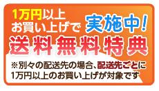 1万円以上お買い上げで送料無料特典※別々の配送先の場合、配送先ごとに1万円以上のお買い上げが対象です