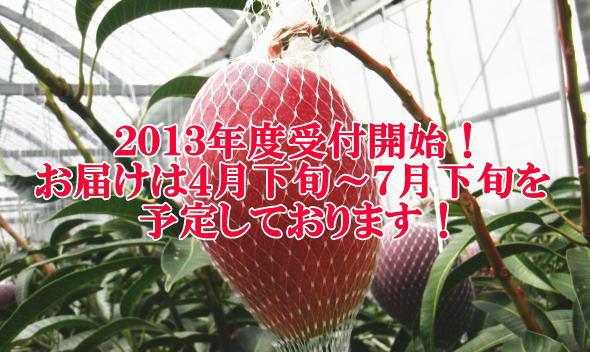 mango2013.jpg